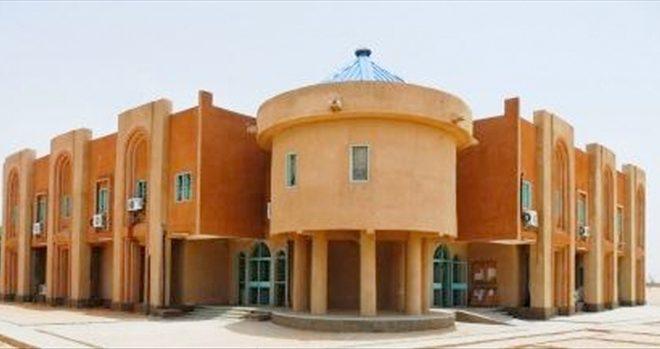 Université Niamey Niger grève