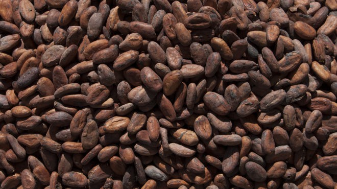 Cacao Côte d'Ivoire Ghana
