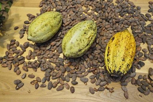 Ghana : hausse du prix minimum garanti aux producteurs